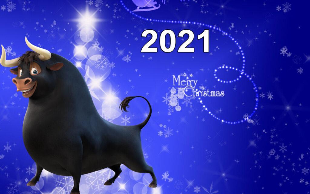 Рецепты на Новый Год 2021: рецепты с фото - простые и вкусные