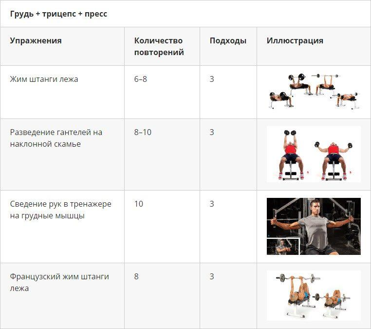 Программа тренировок для эктоморфа для набора мышечной массы