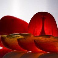 Хурма: польза и вред для здоровья женщины